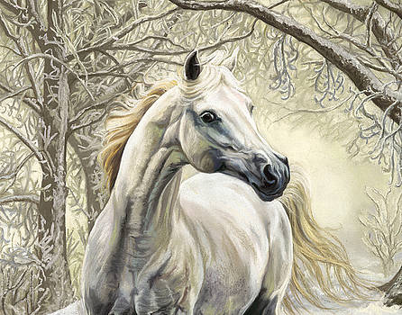 Horses of the Four Seasons - Winter by Kim McElroy