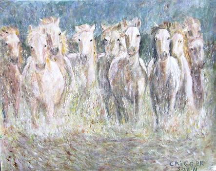 Horses Running in Water by Glenda Crigger