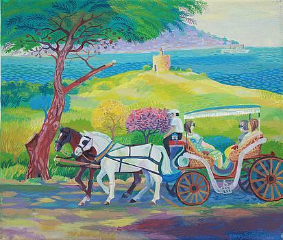 Horses by Yavuz Saracoglu