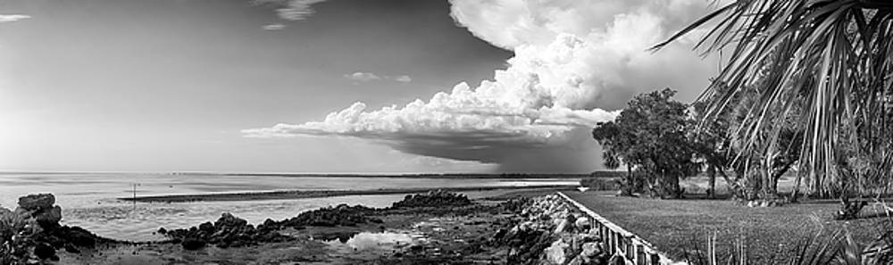 Horseshoe Beach by Howard Salmon