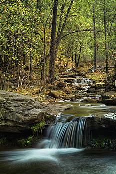 Saija Lehtonen - Horton Creek Falls