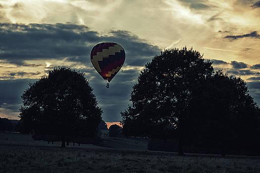 Hot Air Balloon Between The Trees At Dusk by Scott Lyons