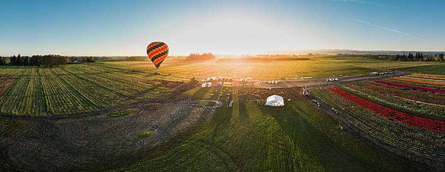 Hot air balloon taking off at sunrise by William Freebillyphotography