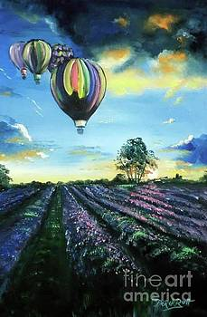 Derek Rutt - Hot Air Over Tuscany Lavender At Sunset