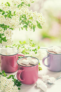 Hot cocoa with marshmallows in pink cups by Victoria Kondysenko