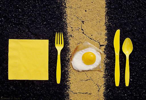 Warren Sarle - Hot Enough to Fry an Egg
