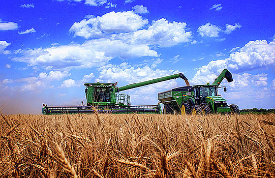 Hot Harvest by Thomas Zimmerman