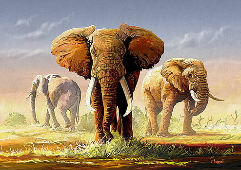 Hot Mara Afternoon by Anthony Mwangi
