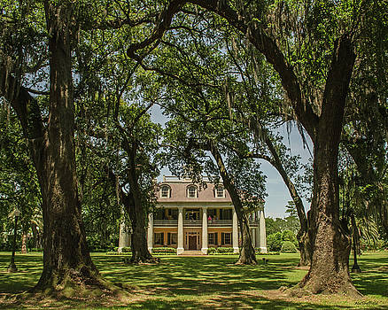 Allen Sheffield - Houmas  House Plantation and Gardens
