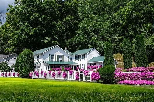 House of Flowers by Stephanie Calhoun