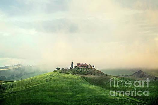 House Of Rising Sun by Evelina Kremsdorf