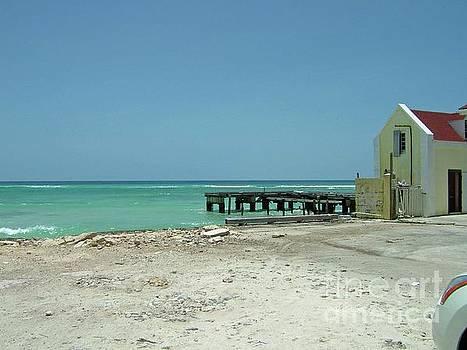 Gary Wonning - House on the beach