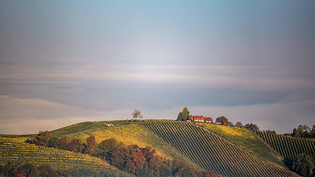 House on top of the hill by Davorin Mance