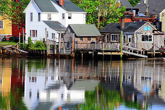 Houses in the Harbor by Brian Pflanz
