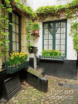 Houses with an outdoor water pump in old town Antwerp Belgium by Louise Heusinkveld