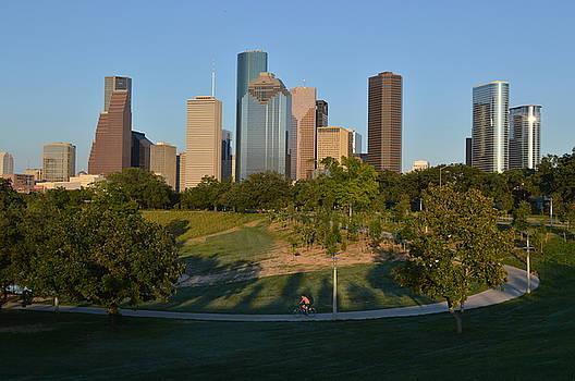 Houston Skyline by Heidi Pence