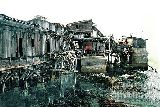 California Views Mr Pat Hathaway Archives - Hovden Cannery Pump House, Cannery Row May 1980