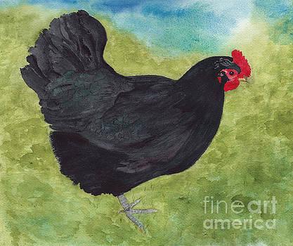 How Do You Like My Little Black Dress? Iridescent Black Hen by Conni Schaftenaar