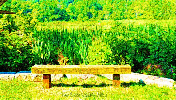 How Green Was My Valley by David Schneider