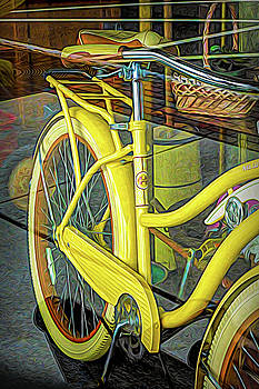 How Much Is That Huffy In The Window by Robert Meyerson
