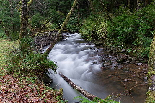 How the river flows by Jeff Swan