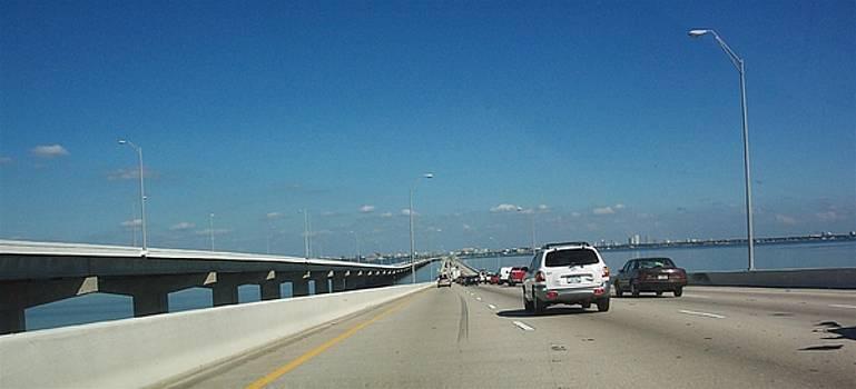 Howard Franklin Bridge - Tampa by Mary Sedici