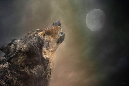 Howling at the Moon by Nicole Wilde