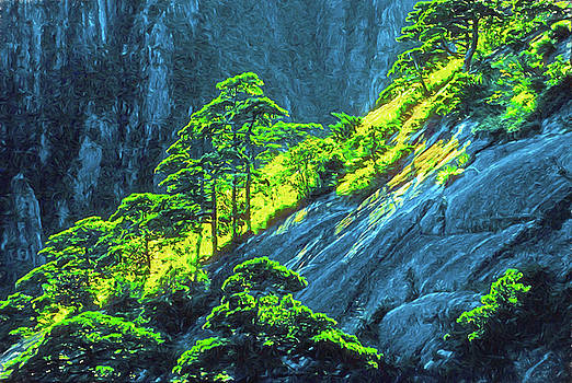 Huangshan Pines by Dennis Cox Photo Explorer