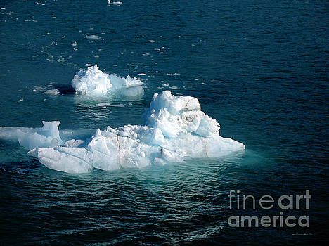 Connie Fox - Hubbard Glacier Icebergs