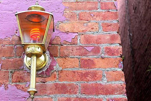 Hudson Red Light District by Nancy Furstinger