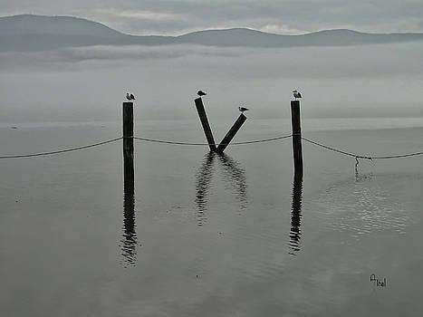 Hudson River Fog by Alan Thal