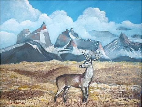 Huemul near Torres del Paine by Jean Pierre Bergoeing