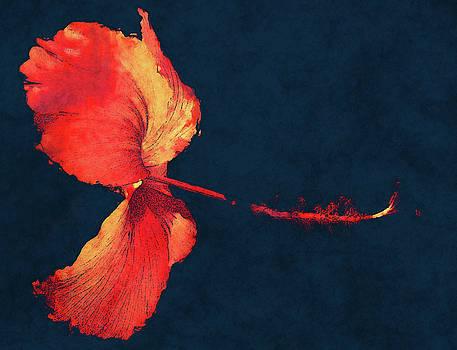 Huge Hibiscus Illustration by Georgiana Romanovna