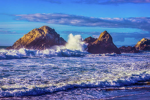 Huge Wave Seal Rock by Garry Gay