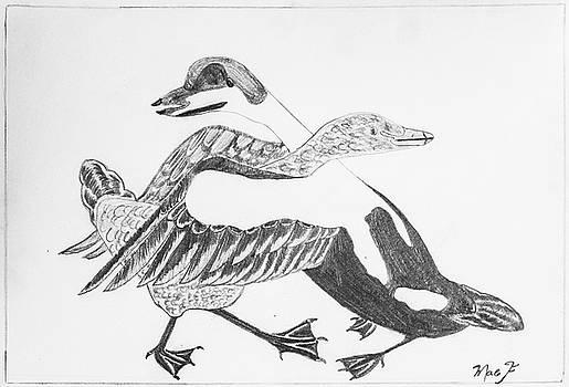 Hugging Ducks by Dean Italiano