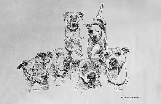 Humane Society Gang by Larry Whitler