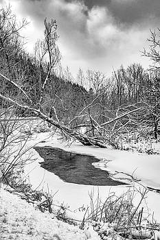 Humber River Winter 4 bw by Steve Harrington