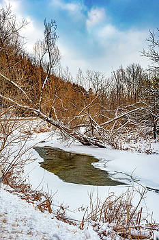 Humber River Winter 4 by Steve Harrington
