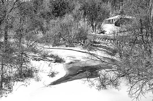 Humber River Winter 5 bw by Steve Harrington