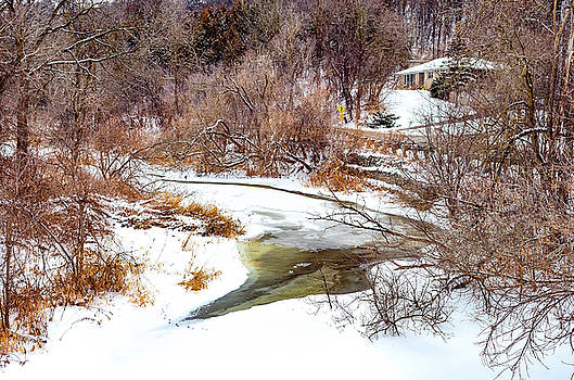 Humber River Winter 5 by Steve Harrington