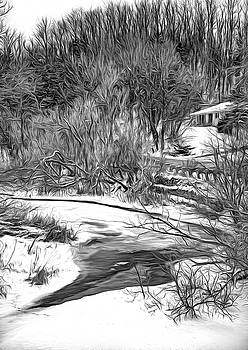 Humber River Winter 6 bw by Steve Harrington