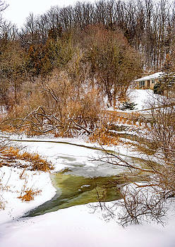 Humber River Winter 6 by Steve Harrington