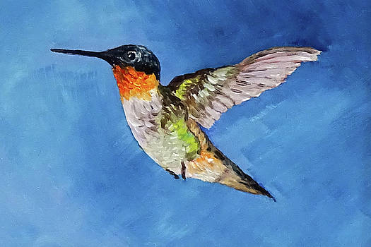 Hummer by Vicki Rees