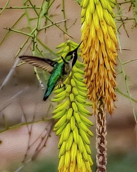 Hummingbird Treat op1815 by Mark Myhaver