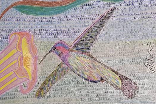 Humming Bird  by Amber Waltmann