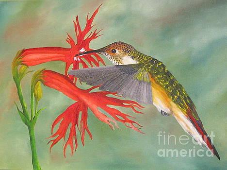 Hummingbird #3 by Richard Dotson