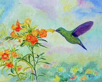 Hummingbird A Green Violetear  by Jeannie Allerton