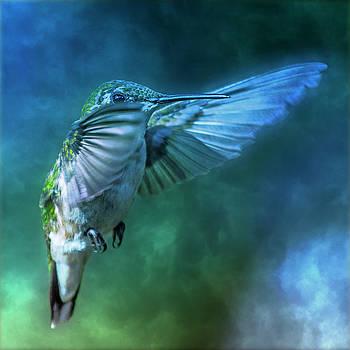 Hummingbird A Whisper in the Fog  by Betsy Knapp