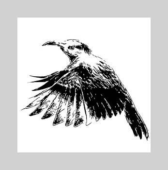 Hummingbird by Alexandra-Emily Kokova