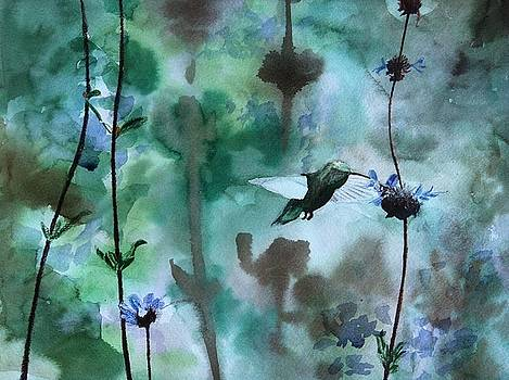 Hummingbird and Cleveland Sage by James Nuce